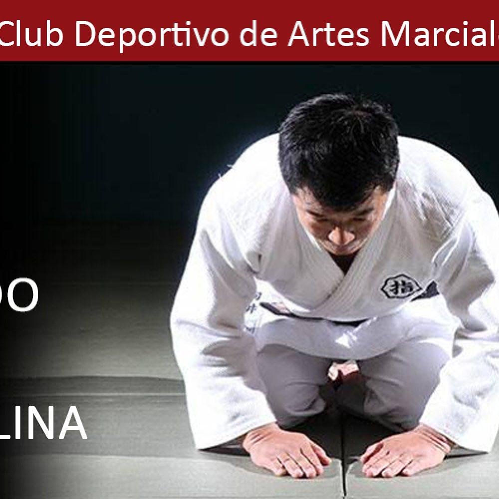 El Judo como Disciplina